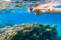 icacos-snorkeling-pg-14