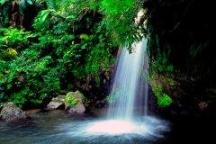 el-yunque-page-image-waterfall
